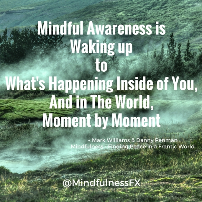 Image result for mindfulness awareness